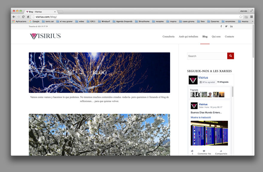 Web Visirius